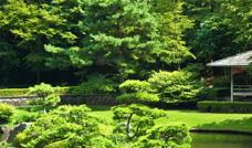 風景・庭園