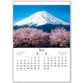 富士山〔世界文化遺産〕